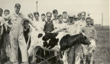 John Shaw with group of boys and cow in a yard