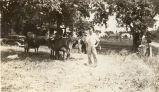Bill Trager with his dairy cows circa 1935