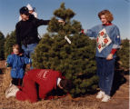 Marketing photo for Warren's Christmas tree farm
